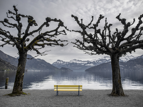 In dreams 2. mountains, water, yellow, bench, shot, scenic, olympus, lucerne, omd, 1240, em5, lenslake. buy photo