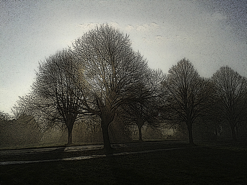 Ladies Mile In The Mist. uk, trees, winter, england, mist, weather, bristol, clifton, ladiesmile. buy photo