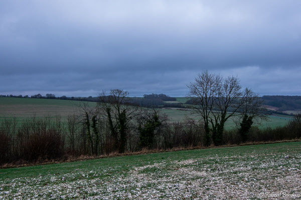 First winter days in the Picardie. france, green, nature, landscape, village, picardie. buy photo