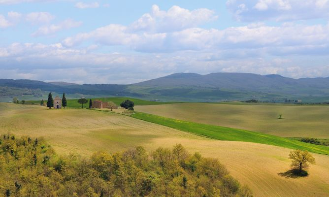 Tuscany in April 2014.. italy, nature, tuscany. buy photo