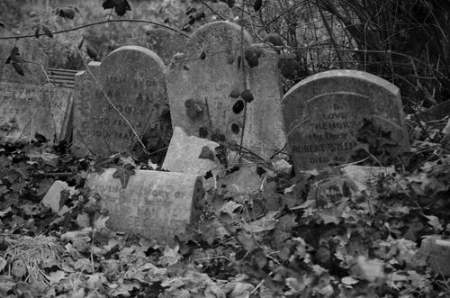 Graves Hendon Cemetery London NW4 23rd Dec 2014. cemetery, moody, gothic, victorian. buy photo