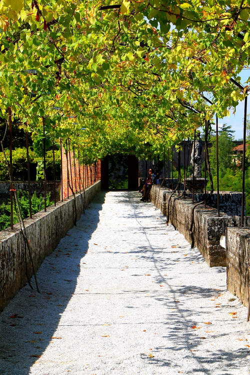 A FAIRYTAIL WALKWAY IN ALBI 9-8-2014 6-21-29 PM. travel, flowers, windows, cemeteries, food, paris, france, color, brick, castles, feet, cemetery, vegetables, birds, rose, les, seine, fruit, cheese, architecture, bronze, photography, death, this, moss, hands, europe, wine, metro, eiffeltower, obsession, tourist, musee, luggage, desserts, cobblestone, invalides, sunflowers, vin, ate, provence, toulouse, notre, dame, pastries, tombstones, montparnasse, loire, loirevalley, blanc, wandering, sculptures, rodin, jardins, toulouselautrec, claudel, archdetriomphe, tulleries, gardins, iloveparis, tarnriver, camiile, iphoneography, instagram. buy photo