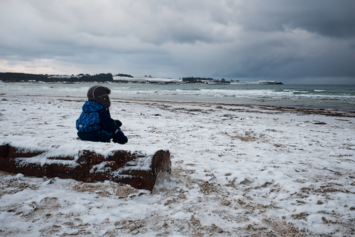 a person sitting on a beach with a surfboard. winter, snow, beach, norway, stavanger, norge, kid, nieve, playa, noruega, invierno, niño, rogaland. buy photo