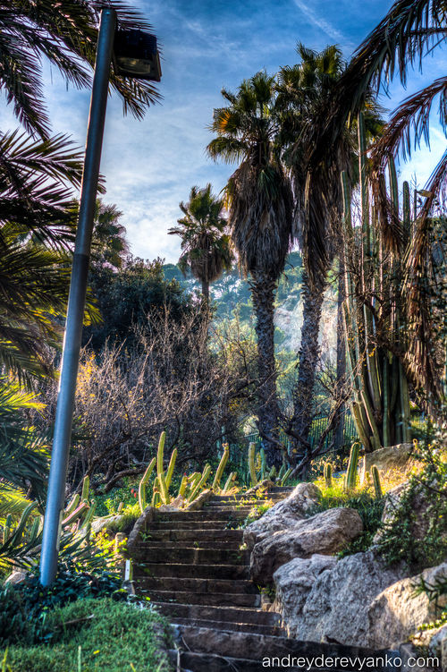 Stairs to Montjuic. barcelona, spain, europe, catalonia, hdr, montjuic. buy photo