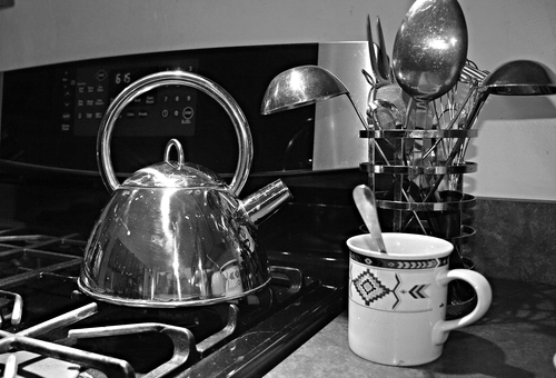 Tea Kettle & Cup. spring2009. buy photo
