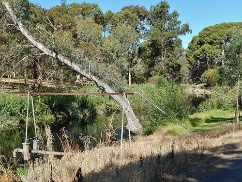 Out the Back of the Adelaide Zoo. path, pipes, adelaide, leaning, rivertorrens. buy photo