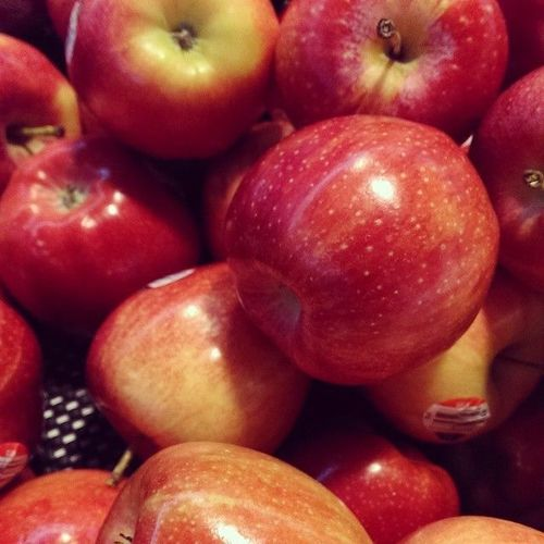 Apples #fruit #food. square, squareformat, iphoneography. buy photo