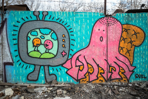 IMG_0281. city, urban, abandoned, colors, canon, graffiti, russia, moscow, octopus, walls, 6d, 163528l. buy photo