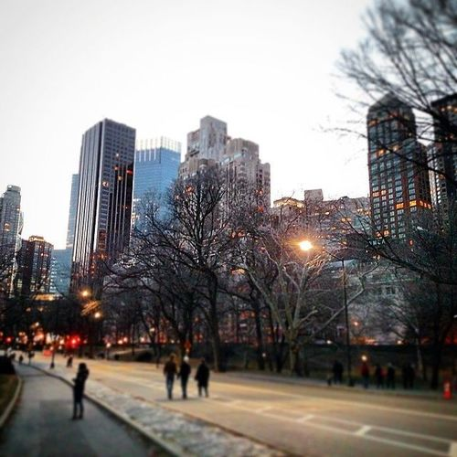 #manhattan #centralpark #park #winter #trees #street #streetphotography #newyorkcity #newyork #nycphoto #ny #usa #sky #skyline #buildings #architecture #amazing #cool #beautiful #colorful #city #urban. city, nyc, newyorkcity, urban, ny, newyork, skyline, architecture, skyscraper, buildings, square, manhattan, squareformat, iphoneography. buy photo