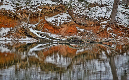 THE BUTTERFLY EFFECT. winter, snow, reflection, nature, landscape, explore, annapolis, waterreflection, waterscape. buy photo