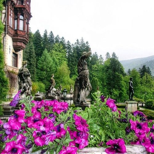 Peles Castle, Romania #Peles #castle #Romania #Mihai #Carol #king #theresa Watch more about Romania Points of Interest in the videos bellow: http://goo.gl/UEPppc. square, squareformat, iphoneography. buy photo