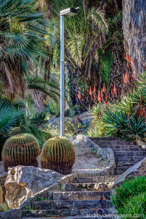 Stairs in Color. barcelona, cactus, cacti, spain, colorful, europe, catalonia, hdr. buy photo